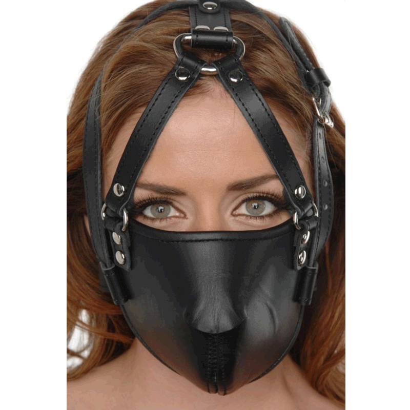 Face Harness